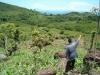 Testimonio de Delfin Luis Pas, licenciado en agronomía, beneficiario