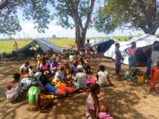 Oikos vai distribuir alimentos a 79 mil pessoas em Moçambique