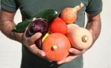 Circuitos curtos agroalimentares e SmartFarmer no Porto