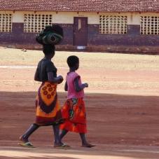 Desenvolvimento rural fortalecido em Moçambique