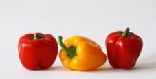 """Seminário """"Agricultura nacional - produção local - comercialização direta"""""""