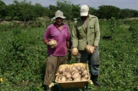 Cuba – Agro-energy farming cooperatives for sustainable development in rural areas