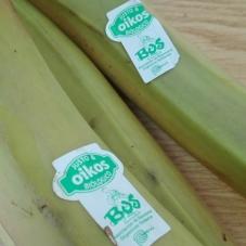 """""""Oikos Justo & Biológico"""" - Novos pontos de venda de Banana biológica em Portugal"""