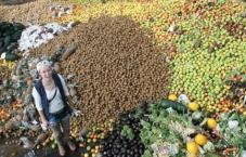 Uma grande vitória contra o desperdício de alimentos na Europa!