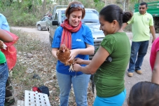 Oikos delivery 6000 chickens in Nicaragua