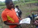 Programa Nacional de Extensão Agrária em Moçambique