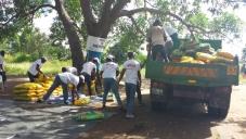 Reconstrução de Moçambique - entrevista à Oikos para a revista Visão